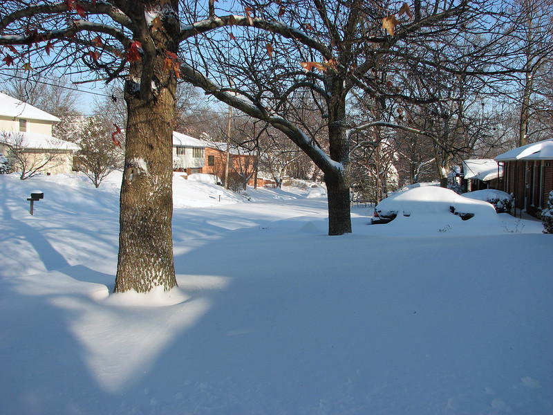 All the city neighborhoods would have to wait for a while to see a plow, (i.e. several days).