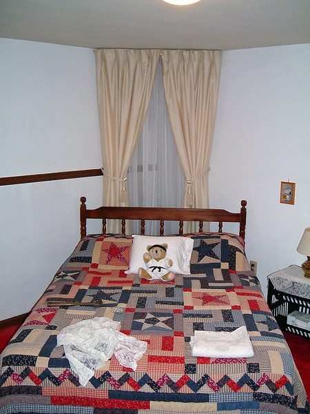 We did some more work on the downstairs bedroom in preparation for Petra's arrival.