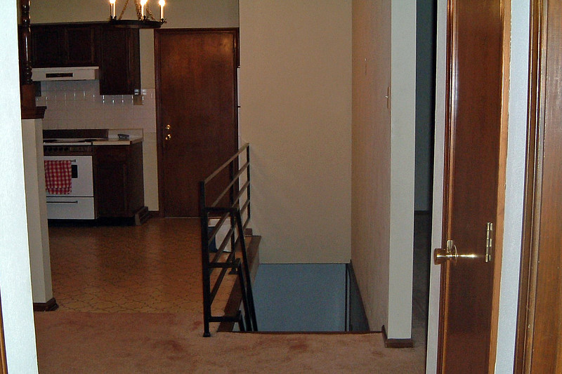 The stairs seen in the photo above lead to the basement.