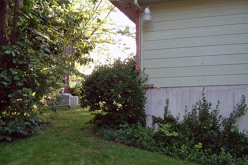 The side yard on the driveway side of the property is somewhat narrow, but easily accessible.