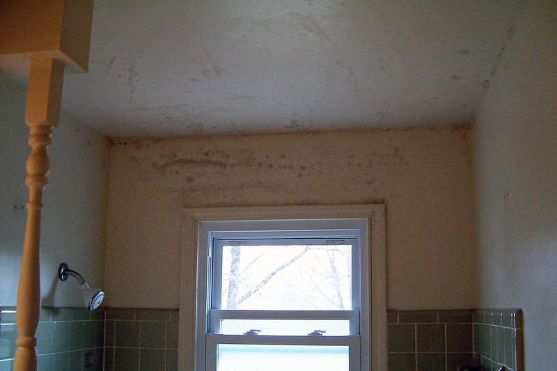 Removed the shower and window curtains.