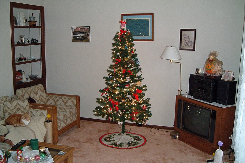We decided to go with a pre-lit artificial tree.