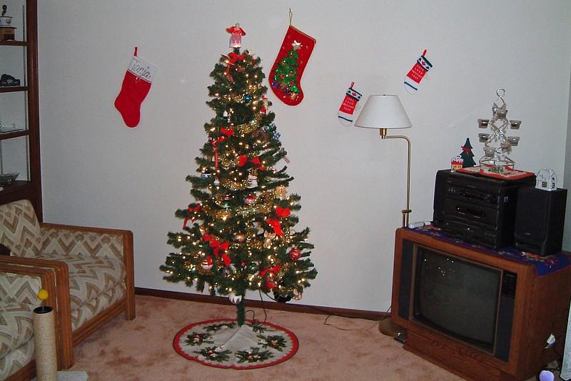 Living room Christmas decorations.