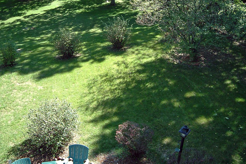 The size of the yard can be fully appreciated from this vantage point.