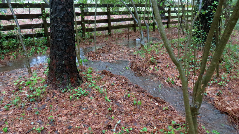But even so, the amount of runoff was strong enough to breach the valley in this location.