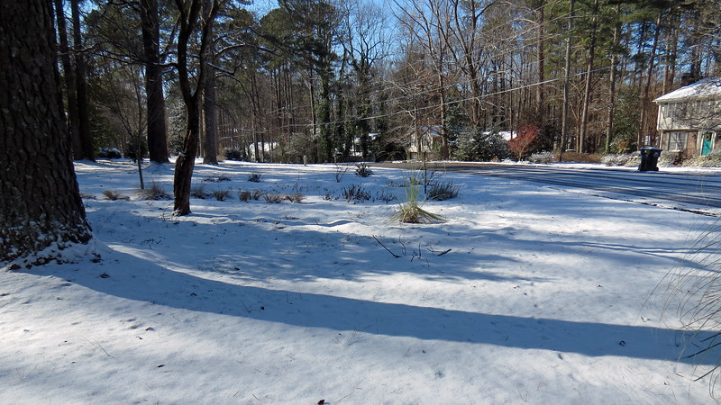 The snow began during the overnight hours and accumulated about 1 inch on the grass by the time morning arrived.