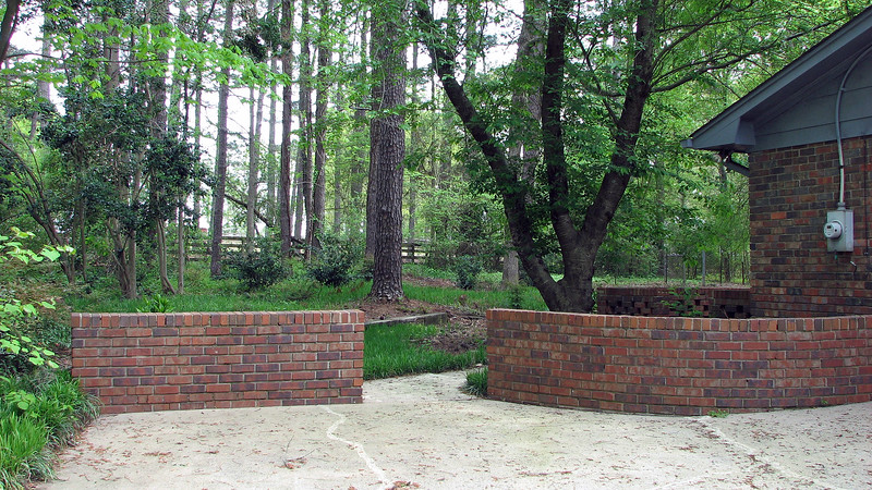 Looking at the backyard from the driveway, it's evident that some maintenance needs to be done.