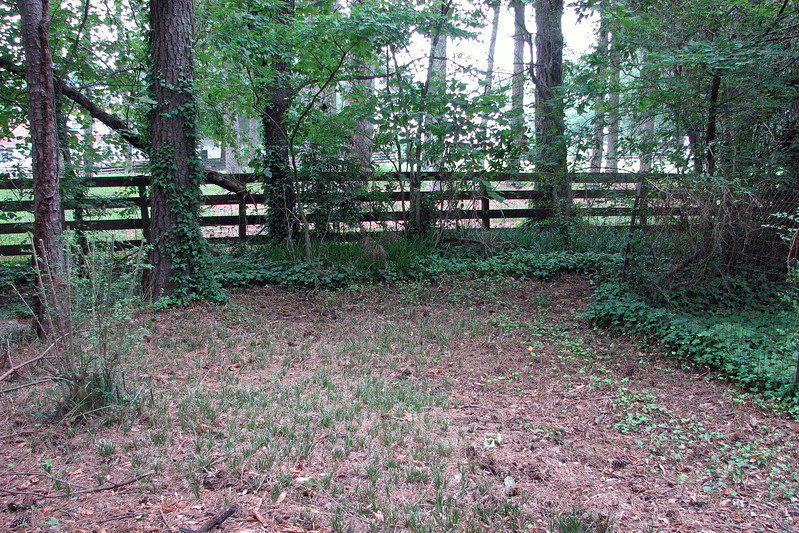 This area also looks much better after a few passes with the lawn mower.  Little by little, I'll work my way into the area behind the dog enclosure.  Since we don't have a dog, I will probably remove the old fence which will make this area more accessible.