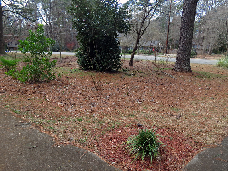 Welcome to the 2018 edition of my Annual Yard Adventure.  Yard work season typically arrives in February around here and always begins the same way.  My yard is full of pine trees that drop needles, cones, and even large branches everywhere.