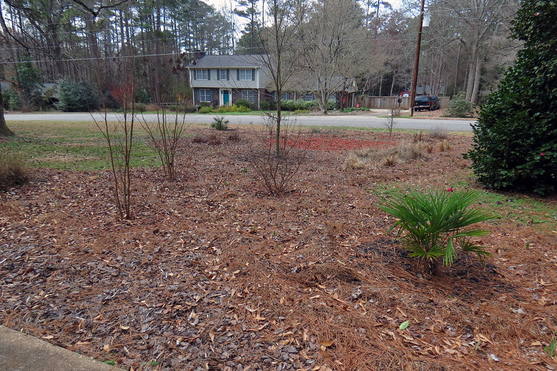 """Until last fall, I had been using the same basic design I stumbled upon in 2015 that featured several clusters of plants highlighted with three different colors of mulch.  Lowe's has always been happy to supply me with bags of red and black mulch that I used to highlight the individual plant clusters within the design.  My lawnmower and a few afternoons of elbow grease produced the brown """"homemade"""" mulch I use to surround everything and tie the design together.  I've been very happy with the results."""