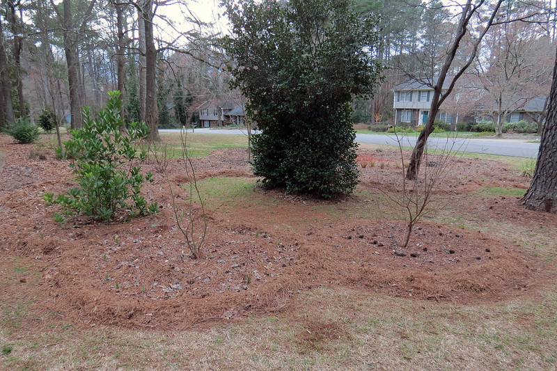 """I pulled the lawnmower out of the garage to get the cleanup process started.  The simple, yet tedious activity involves mowing the yard with the bag attached.  I spread the resulting """"homemade"""" mulch around the various borders within the design."""