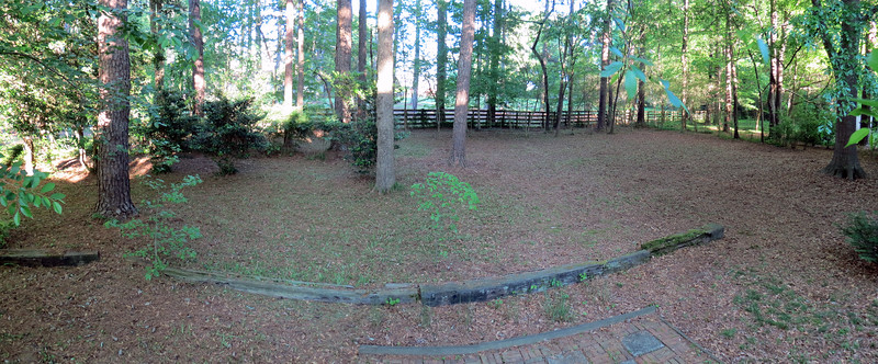 Backyard panorama, April 21, 2019.