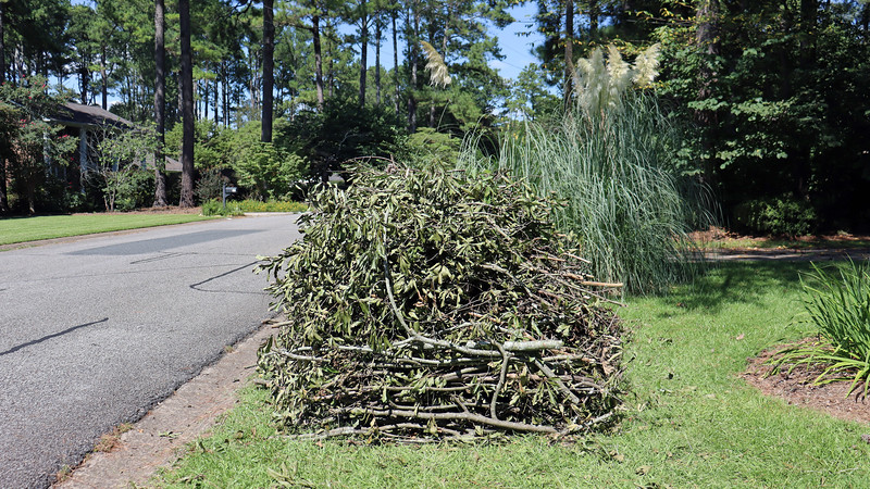 August 31:  My pile was a bit larger than normal thanks to all of the branches I pruned last weekend.