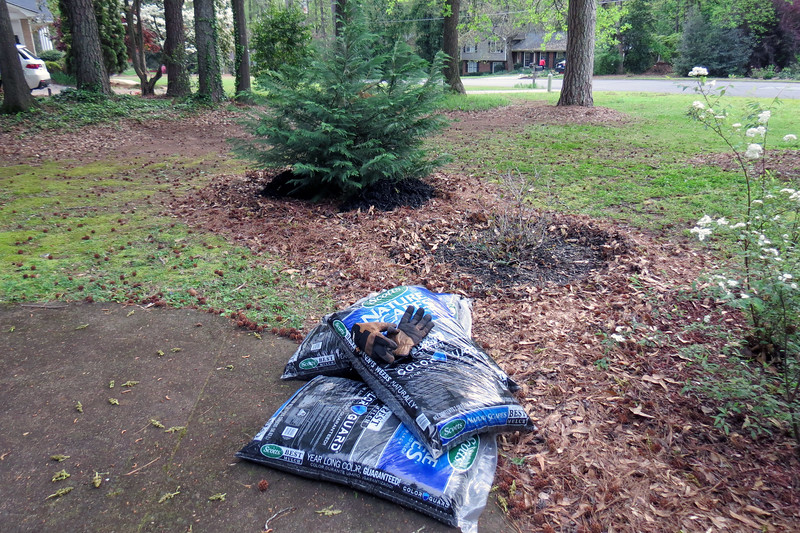 April 7:  I used the following weekend to finish the mulch project.  Lowe's had Scott's mulch on sale today.