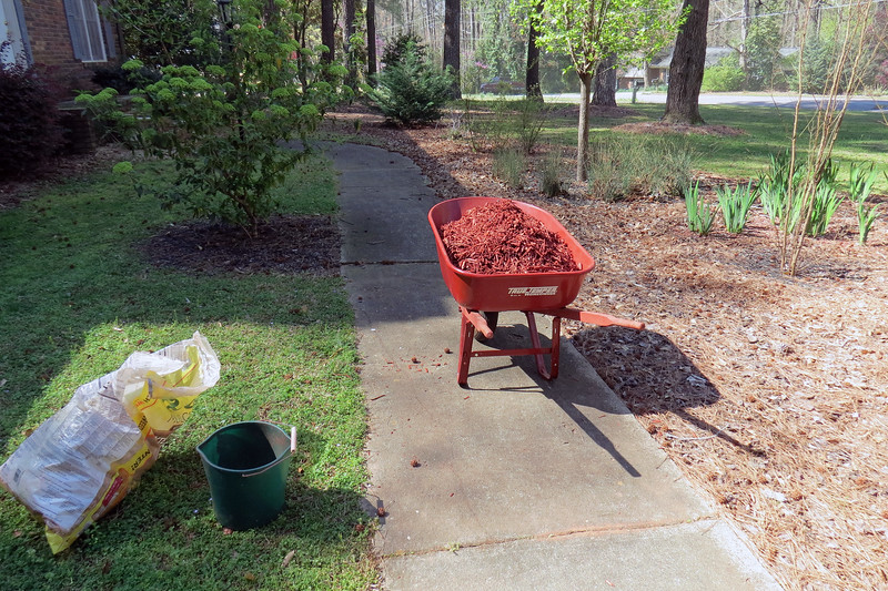March 24:  I used the same wheelbarrow and bucket plan from last year because it worked very well.