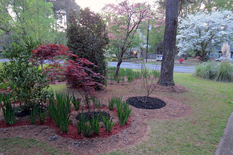 April 7:  And before long, the spring mulch project was completed.