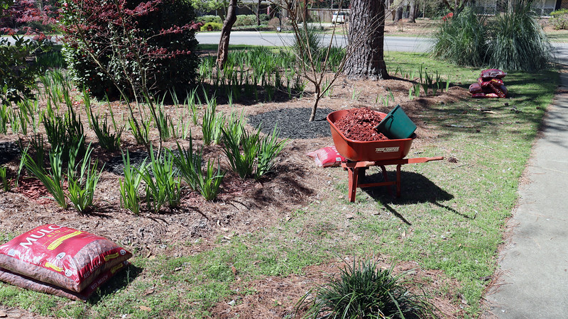 Time to get started with the red mulch project.