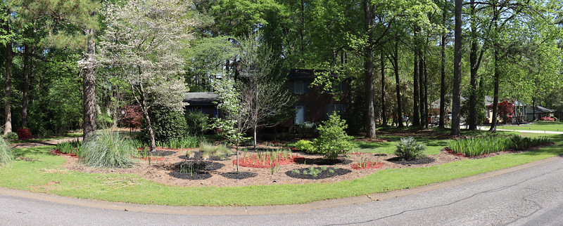 Front yard panorama.
