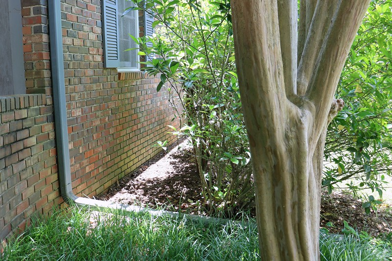 Back in April, I began a very ambitious weeding project in the yard.  I've never placed a lot of emphasis on weeding.  But a decade of this annual yard adventure has made me realize that I should have been keeping on top of this issue a lot better than I have.