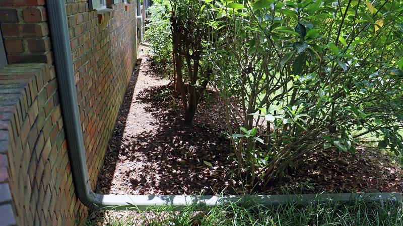 Today's project was to fill the area in front of the house I cleaned out a few weeks ago with mulch.