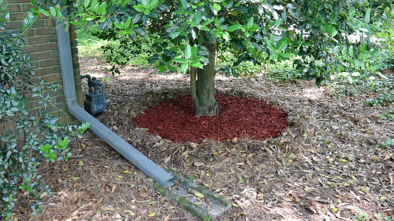 I then filled in the circle with red mulch, only because I had enough left over to fill the space.