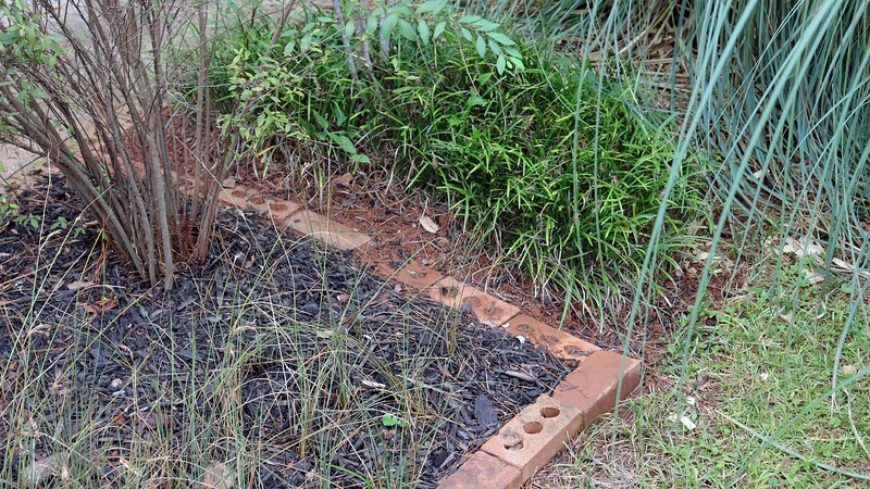 One of the small projects I took care of this weekend was to rearrange the bricks at the mailbox.  With the Pampas grass plants getting so large, I plan on transplanting most, if not all of the border grass around the nandina to other areas of the yard.  I'm not worried about the nandina, (it can survive a nuclear holocaust).