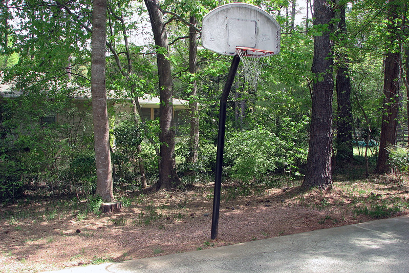 I need to get rid of the basketball backboard and pole.