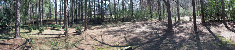 Four-picture panorama of the backyard.  It actually turned out much better than expected.