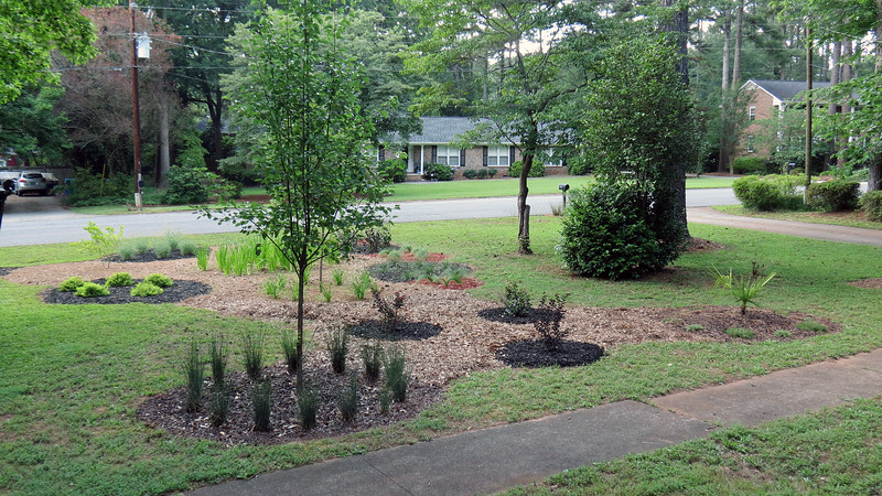"""The triangular shape just didn't match with the """"curved shape"""" theme of the design.  I decided to convert the triangle around the new Crape Myrtles into three smaller circles."""