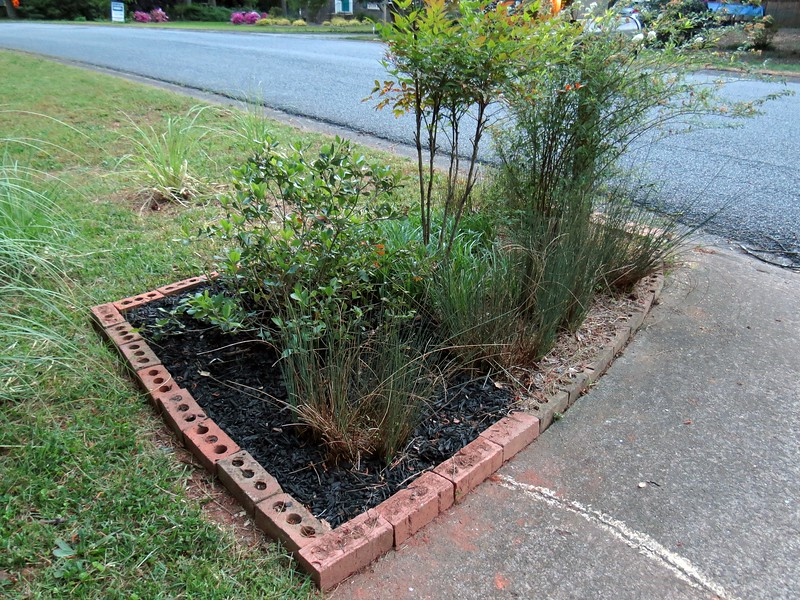 The Indian Hawthorn was already pretty large, meaning I had to make room for it.  I shifted one of the Javelin Rush Grass plants toward the driveway about a foot.  But I still had to make the area larger to fully accommodate the hawthorn.  This required more bricks.  No problem there !  I seem to find bricks every time I put the shovel in the dirt.