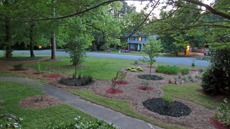 Front yard, April 24, 2016.