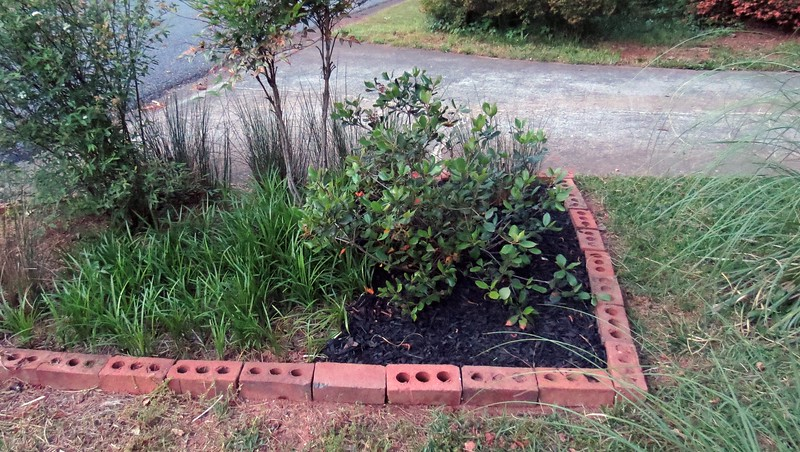 The next item on the agenda was to finally move the Eleanor Tabor Indian Hawthorn away from the front of the house.  I decided to swap locations with the Otto Luyken Cherry Laurel shrub that I moved to the mailbox area back in 2014.  The Indian Hawthorn likes full sun, and the cherry laurel likes part shade.