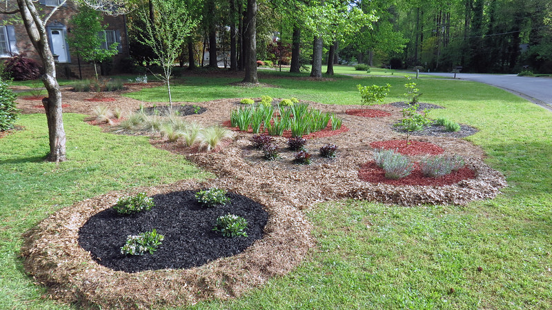 I really like the idea of using the homemade mulch to separate the groups of plants, and having either black or red mulch around the plants themselves.  There are only two areas left that aren't already done this way, (between the two groups of ornamental grass plants seen above).