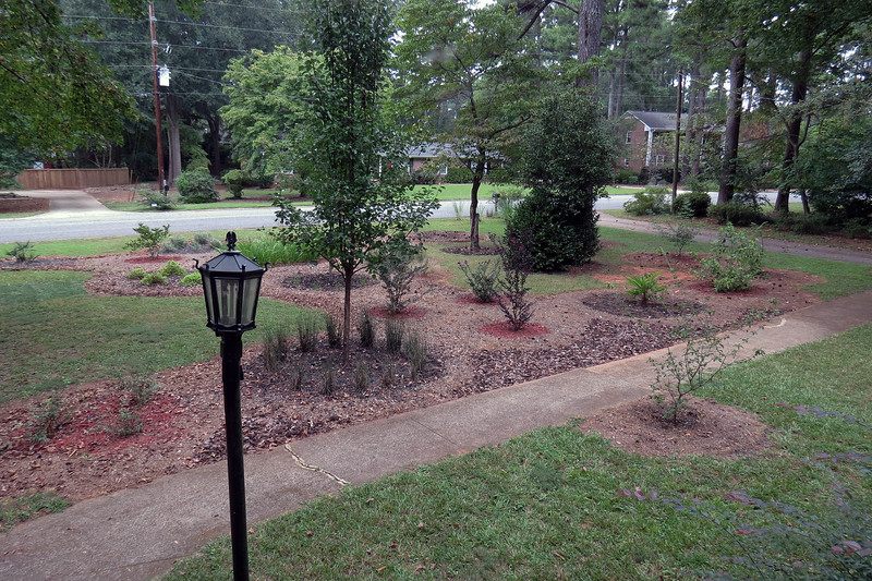 Only the area beside the ornamental grass remains to be filled in with homemade mulch.  As the leaves continue to drop throughout the fall, I'll have this area filled in very soon.