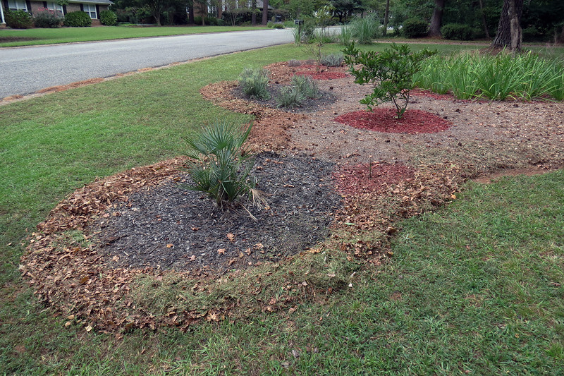 I didn't have a homemade mulch border on this side of the yard originally.  The falling leaves this time of year allow me to expand the border every time I mow.