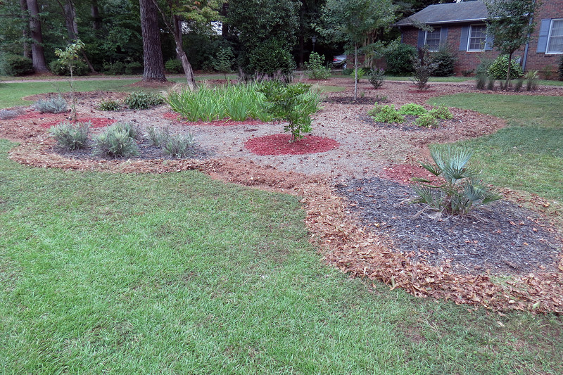 I've managed to surround most of my Random Curved Shape with homemade mulch, (only a small area by the ornamental grass remains).