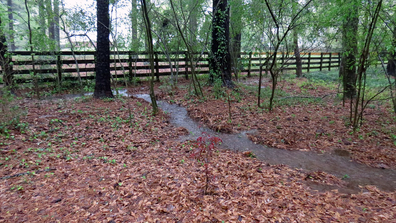 I've never seen this happen before.  The runoff from the property behind mine was enough to create a river flowing through the corner my yard.
