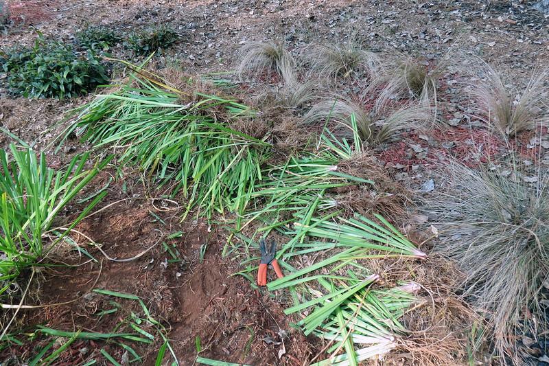 I kept digging and piling.