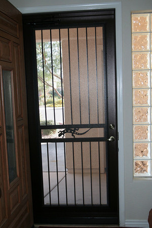 New storm-security door-2010