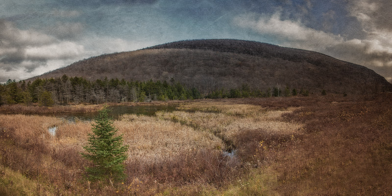 Catskill Landscapes: Round Top Mountain. Catskill Mountains, Ulster County, Hudson River Valley. The Rip Van Winkle Trail, outside Palenville, New York