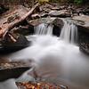 Spruce Creek in Autumn