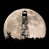 Lunar Lookout