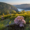 Springtime in the Hudson Highlands