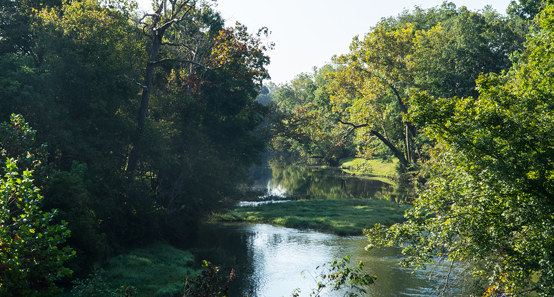 Natchez Trace Parkway, MM 382 -- 9/21, 8:59 am Buffalo River (TN), on a warm, windless, sunny morning.