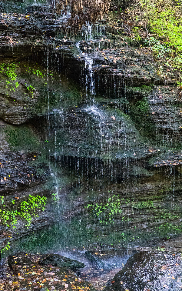 Natchez Trace Parkway, Fall Hollow -- 9/21, 8:22 am The falls get gradually higher as you hike down deeper into the Hollow.
