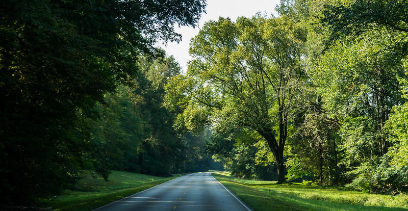 Natchez Trace Parkway, TN -- 9/21, 9:50 am NTP is 442 miles long and about 442 yards wide.  It snakes among small towns and agricultural areas.