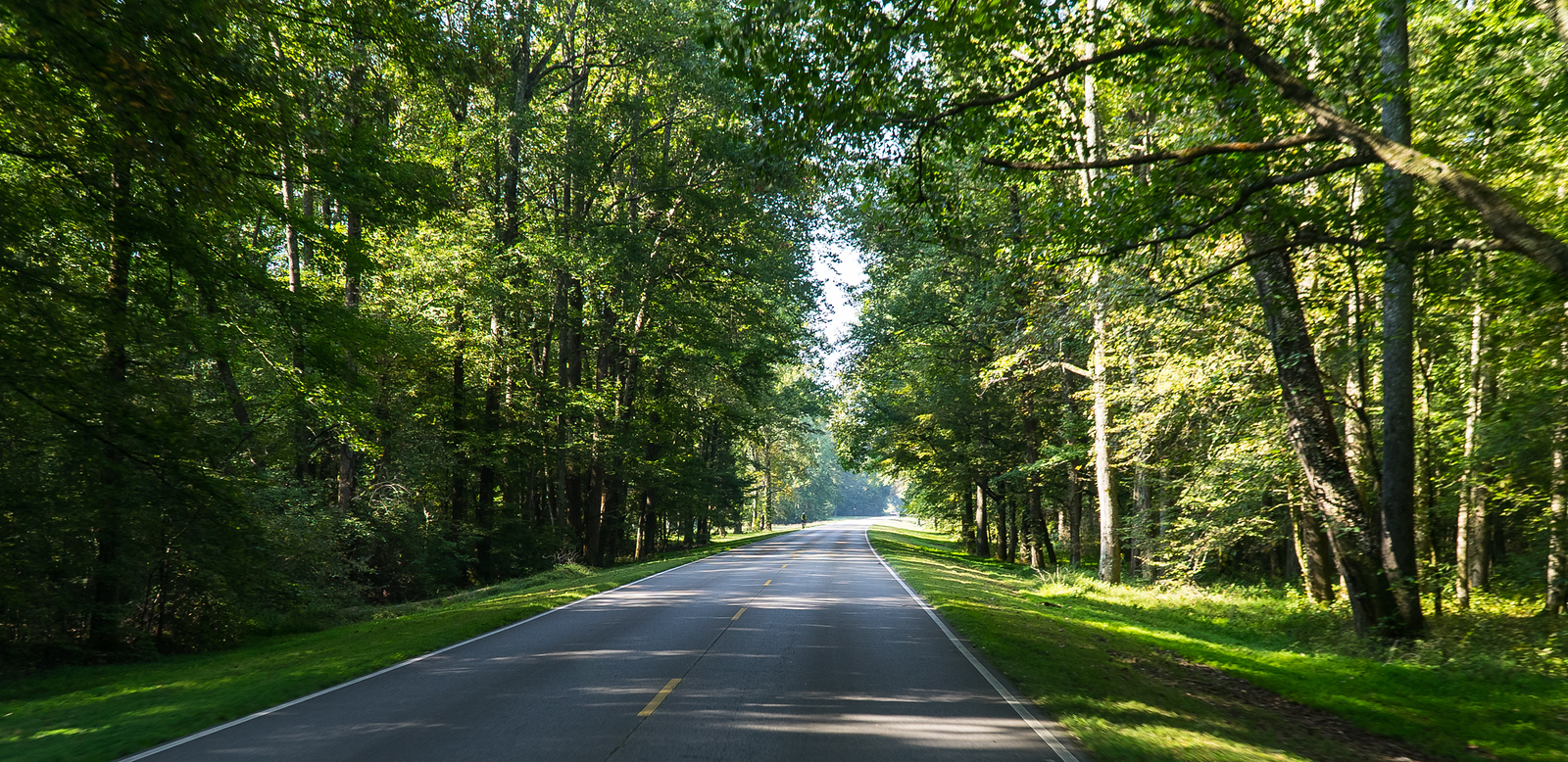 Natchez Trace Parkway, TN -- 9/21, 9:47 am It is the ultimate cruise control road.  Speed Limit 50, but you go the extra 9...