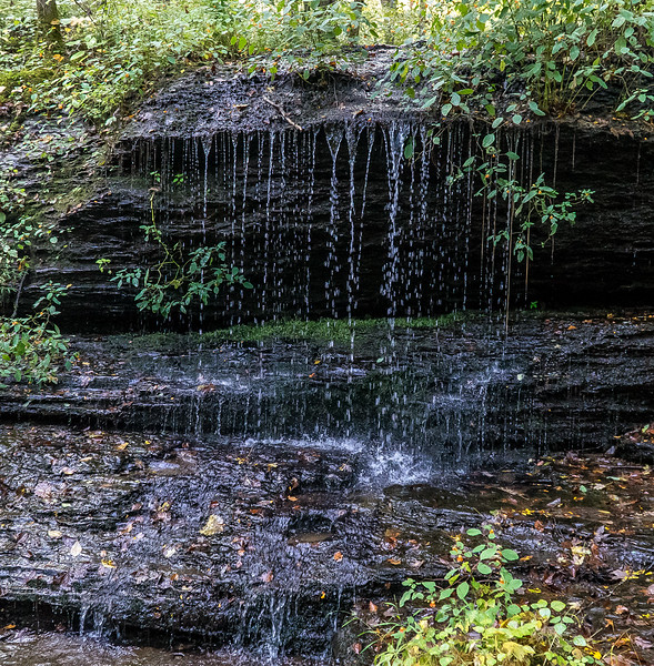 Natchez Trace Parkway, Fall Hollow -- 9/21, 8:14 am Rain runoff from the nearby hills trickles and drips and splashes all around.