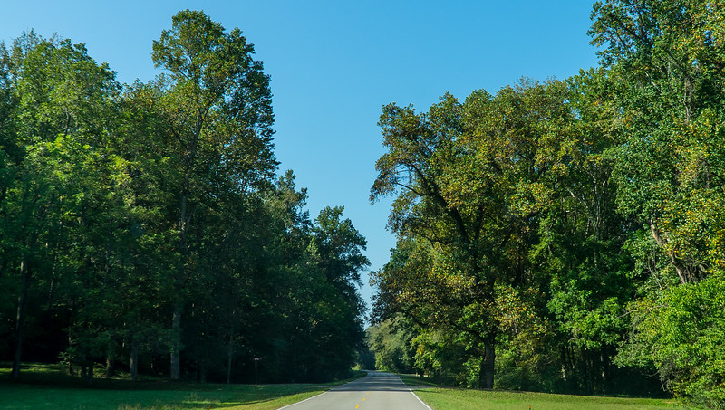 Natchez Trace Parkway, TN -- 9/21, 9:48 am No sense speeding.  Why rush through such a reeeelaxing ride?