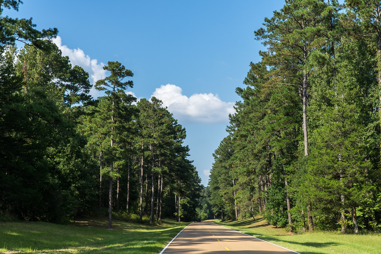Natchez Trace Parkway, MS -- 9/21, 3:33 pm When they reached Natchez, they could not float back upstream, so they sold their boats for the wood and started the long walk back to Tennessee or further north.